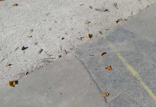 Surface Mouillee (c) Emanuel Ehgartner