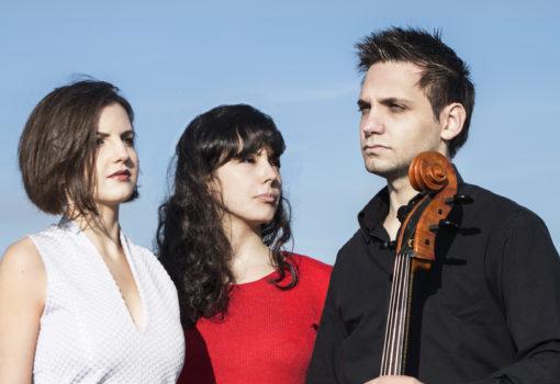 Oct10 Trio Immersio ©michael Zhuk