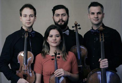 Nov11 Auner Quartett ©