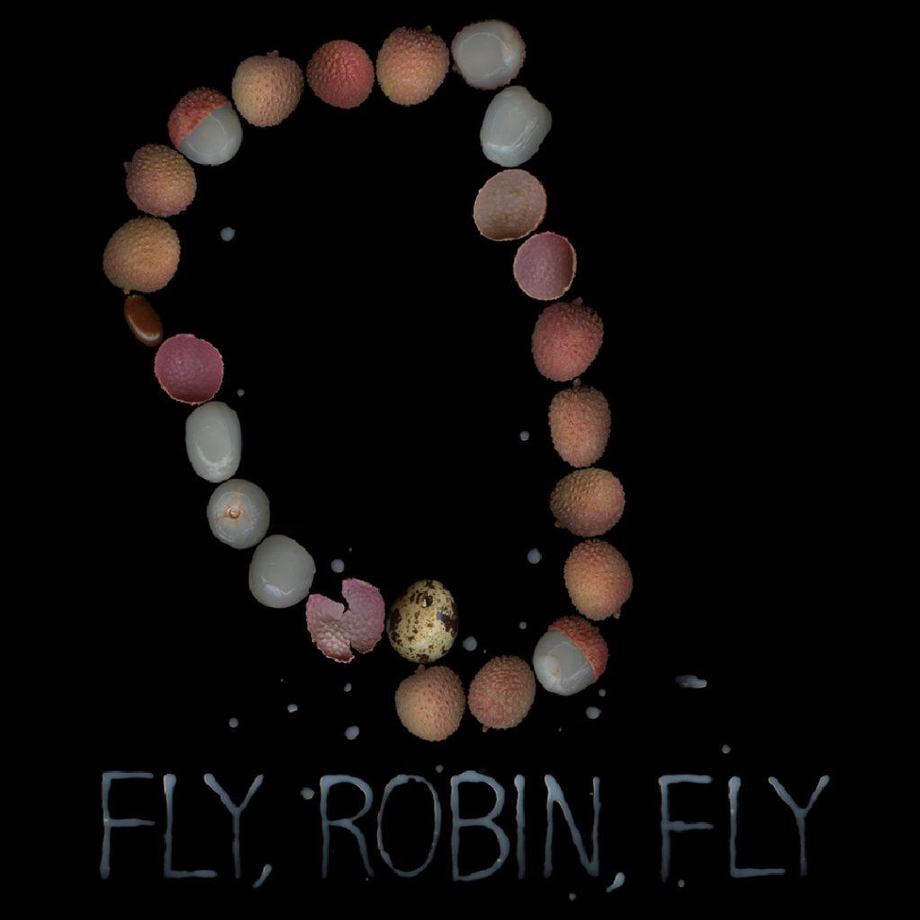 (c) Fly, Robin, Fly